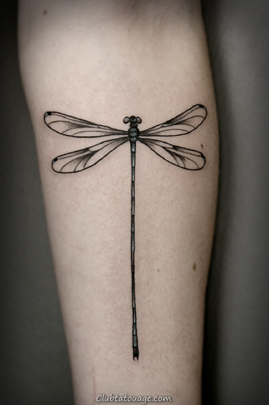 libellule images de tatouage