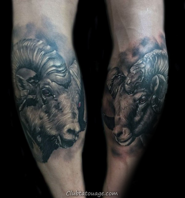 Guy Avec Ram Back Of Leg Calf Tatouages design réaliste