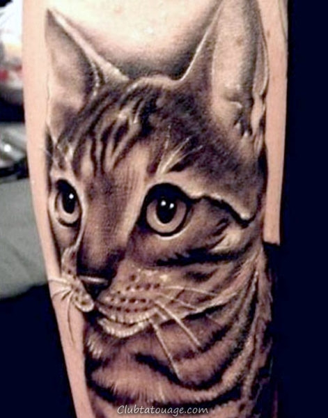 Chats Tattoo Minimaliste 2