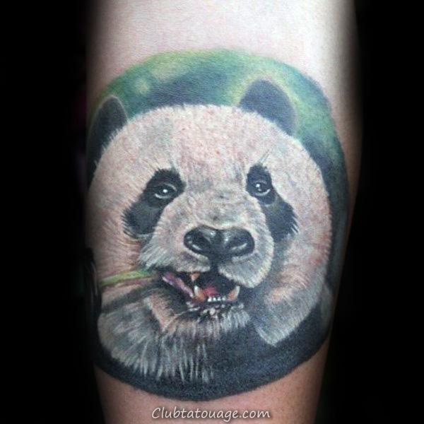 width Cercle Panda Bear Chewing Sur plantes vertes Tige Hommes Tattoos