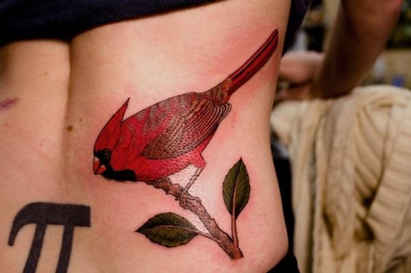 35 conceptions et idées de tatouage cardinal