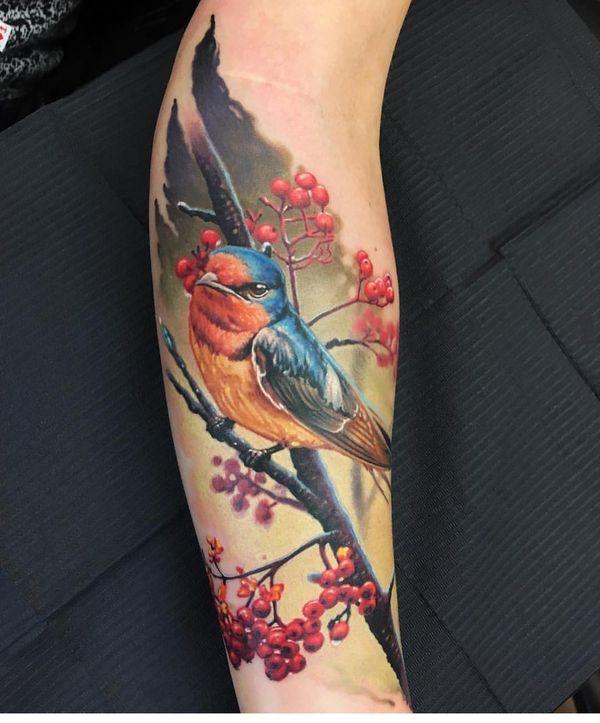 Conceptions et significations de tatouage d'oiseau